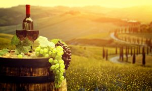 Learn.About.The.Wine.with.Experienced.And.Dedicated .Native.Italian.Teacher